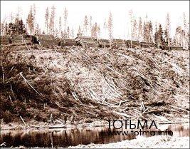 Спуск леса в реку