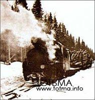 Вывозка леса паровозами ВП-2 по
